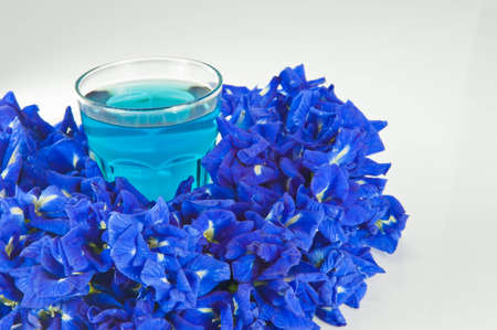 Water is extracted from the flowers on a white background.
