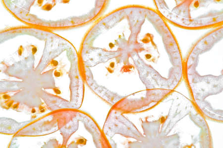 Sliced tomato in water isolated on a white background. Stock Photo