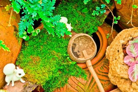 Jar for decoration in garden, Thailand. photo