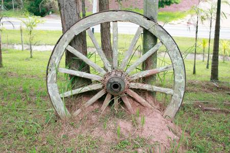 accumulating: Wagon Wheel in backyard,thailand