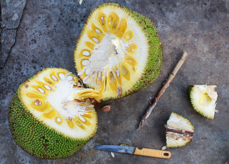 accelerate: jackfruit bamboo skewer to accelerate ripening on the plain background