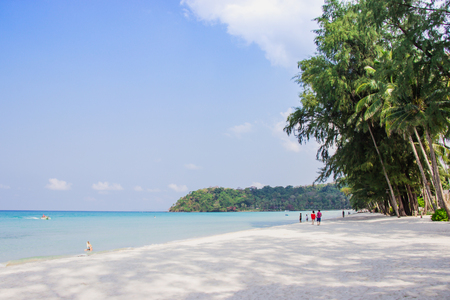 Tourist walk see the panorama of white sand beach with coconut palms taken on haad Klong Chao on tropical koh Kood island in Trat, Thailand.