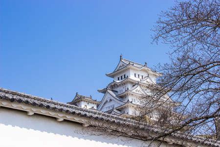 Himeji, Japan - March 11, 2018: Himeji castle during sakura blossom time are going to bloom in Hyogo prefecture, Japan.