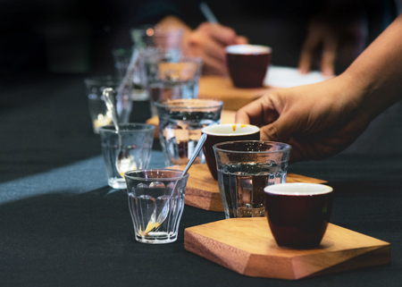Tasting Coffee, Coffee tasting glasses in a coffee shop Standard-Bild