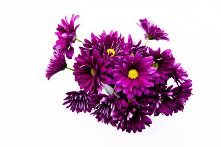 Artificial flower bouquet decoration, copy space background
