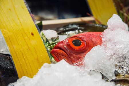 Fresh fish on ice at seafood market Stockfoto
