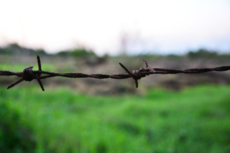 Barbed wire fence  with burred image of field