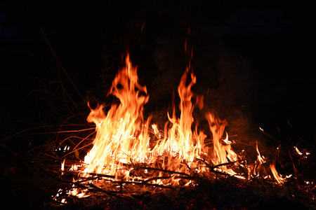 Flame and bonfire at night 免版税图像