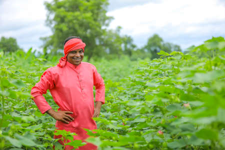 Young Indian farmer at cotton field