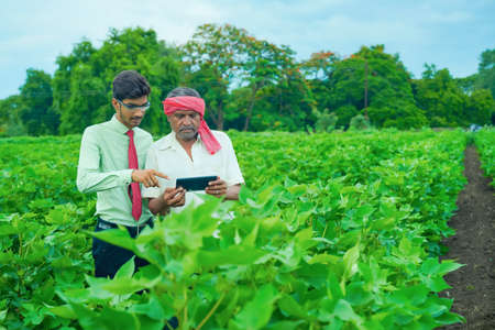 young handsome agronomist and farmer inspecting cotton field with tablet