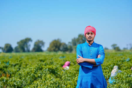 Young indian farmer standing at green chilly field