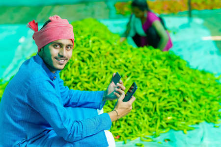 Young indian farmer using smartphone and card at green chilly field