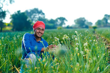 Young indian farmer at onion agriculture field