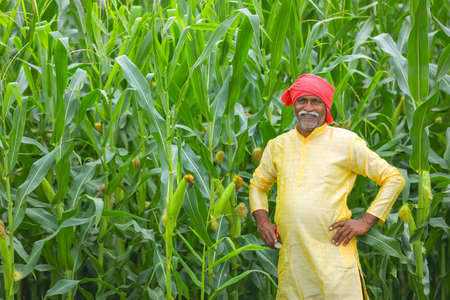 Indian farmer at corn field