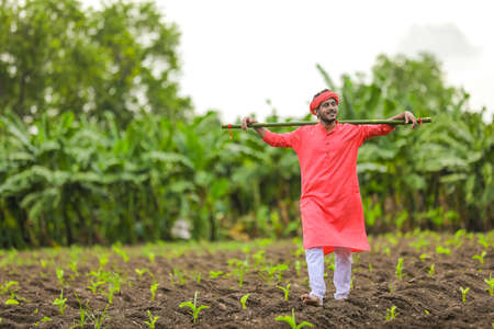 Young indian farmer in traditional wear and holding wooden stick in hand at banana field Standard-Bild