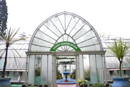 darjeeling: Lloyd s Botanical Garden, Darjeeling Editorial