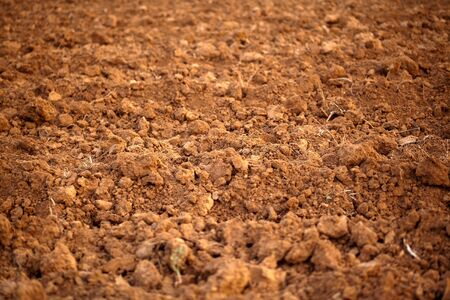 dirt background: Close up and texture of red moist plowed soil in winter