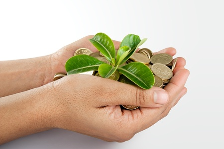 sold small: Pile of money  indian coin   in hand with plant isolated on white background Stock Photo
