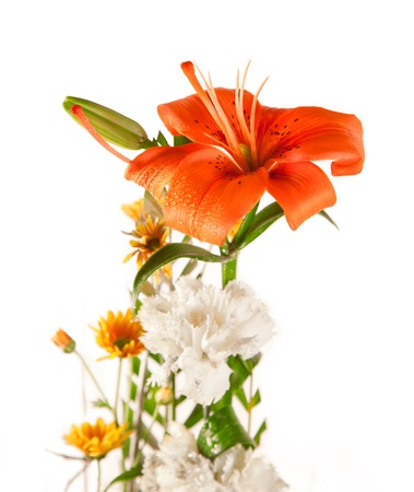 Beautiful Colorful Bouquet of Lily and white flower isolated over white background Stock Photo - 19438735