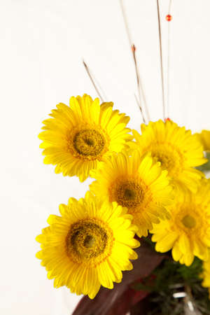 Bouquet of yellow and white flowers on white Stock Photo - 19438746