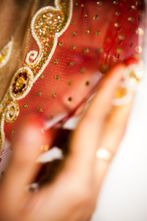 indian saree: Traditional  happy Indian bride with a beautiful smile,  covered her face by veil