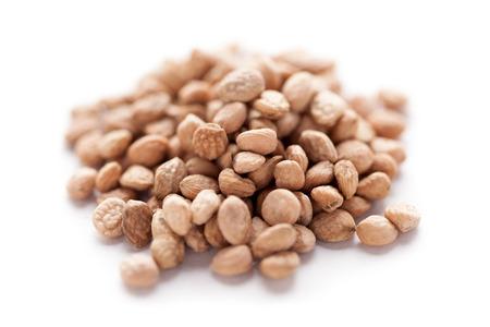 Collection of dry Sarpgandha Seeds (Rauvolfia serpentina). Imagens
