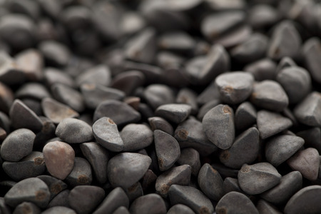 black seed: Collection of black seed of  Morning glory (kaladana)