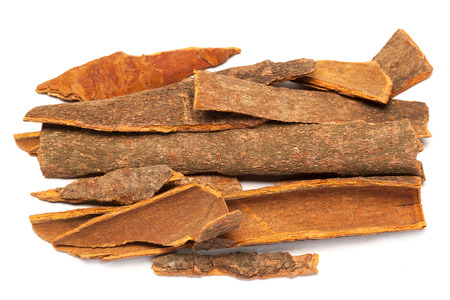 Collection of Cinnamomum camphora or Cinnamon bark over white background