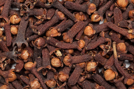 Collection of dry red brown seed clove(loong india) Syzygium aromaticum 免版税图像 - 34565980