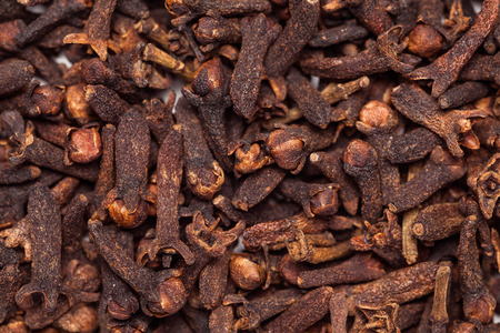 Collection of dry black brown seed clove(loong india) Syzygium aromaticum 免版税图像 - 34565985