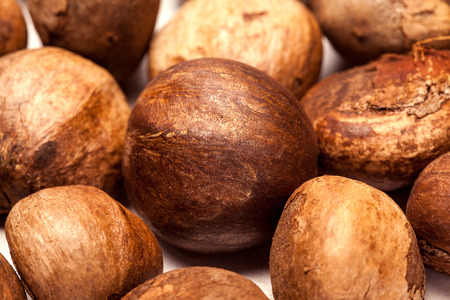 unroasted: Collection of brown Betel nut unroasted untreated (Areca catechu)