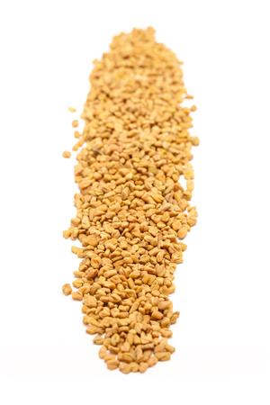 methi: Row of Organic Fenugreek Trigonella foenum-graecum isolated on white background.