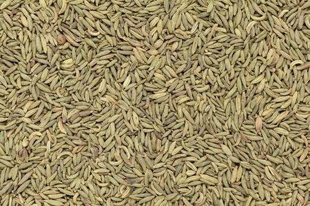 saunf: Organic Aniseed Pimpinella anisum closeup background texture. Stock Photo