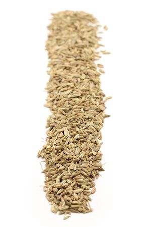vulgare: Row of Organic Fennel seed Foeniculum Vulgare isolated on white background.
