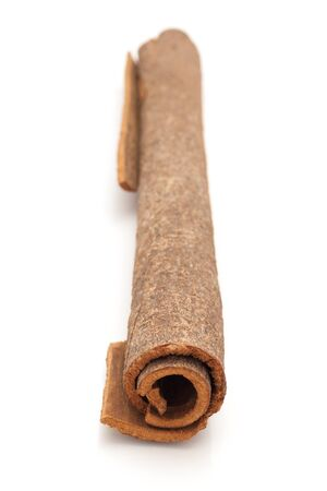 cinnamomum: Close up of Cinnamon stick Cinnamomum verum isolated on white background. Stock Photo