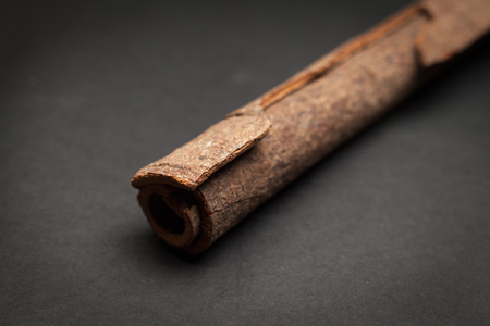 cinnamomum: Close up of Organic Cinnamon stick Cinnamomum verum on dark background. Stock Photo