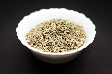 foeniculum vulgare: Organic Fennel seed Foeniculum Vulgare in white ceramic bowl on dark background.