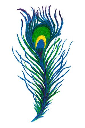 rangoli: Colorful Peacock feather rangoli made of handmade soil colors on white background.