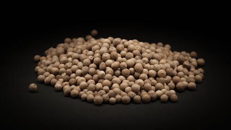 piperaceae: Pile of Organic White Pepper Piper nigrum on dark background.