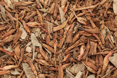 bush fire: Macro closeup background texture of Organic Fire Flame Bush or Dhawai Phool (Woodfordia Fruticosa) seeds.