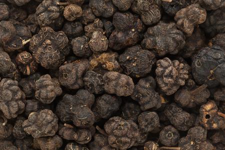 great morinda: Organic Dried Cheese Fruit or Noni (Morinda citrifolia) seeds. Macro closeup background texture. Stock Photo