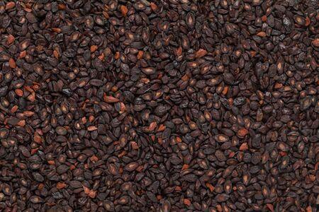 myrtaceae: Organic Lemon Eucalyptus or Eucalyptus Citriodora (Corymbia citriodora) seeds. Macro close up background texture. Top view. Stock Photo
