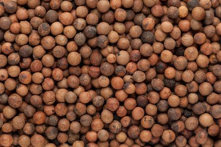 albums: Organic Indian sandalwood (Santalum album) seeds. Macro close up background texture. Top view. Stock Photo
