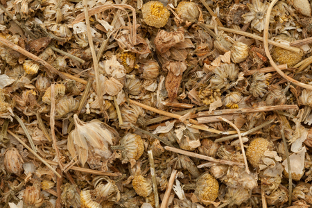 matricaria recutita: Organic dry German chamomile (Matricaria chamomilla). Macro close up background texture. Top view.