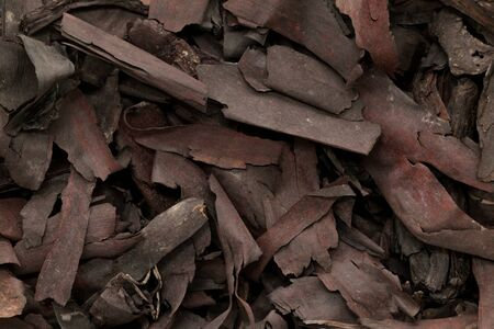 jot: Organic dry barks of Ratan Jot (Alkanna tinctoria) Macro close up background texture. Macro close up. Top view. Stock Photo
