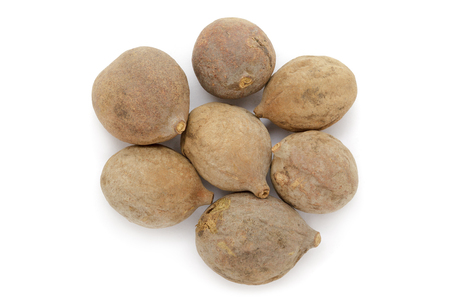 Organic dry Bahera or Beleric (Terminalia bellirica) seeds. Isolated on white background. Macro close up. Top view.
