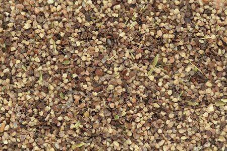 pepe nero: Organico Pepe nero (Piper nigrum) pepe in grande formato taglio. Macro vicino texture di sfondo. Vista dall'alto.