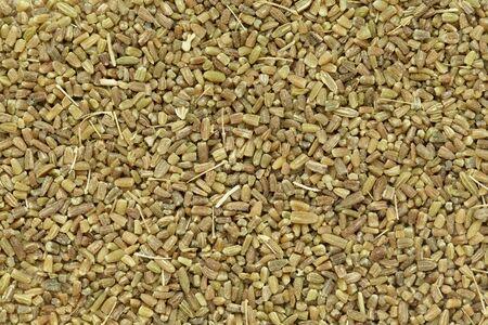 foeniculum vulgare: Organic fennel (Foeniculum vulgare) in tea cut size. Macro close up background texture. Top view.
