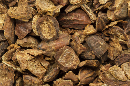 myrobalan: Organic cracked Chebulic Myrobalan or Choti Harad (Terminalia chebula). Macro closeup background texture. Top View.