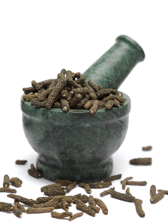 piperaceae: Organic Long pepper  (Piper longum) on marble pestle and over white background